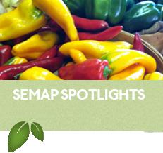 SEMAP Spotlights