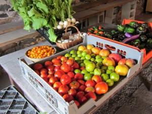 Heart Beets Farm Tomatoes