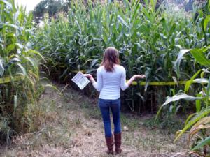 Kendra Murray in Corn Maze