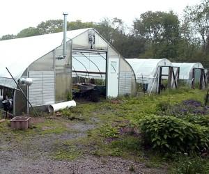 Greenhouse at Eva's