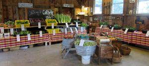 Colchester Farm Stand